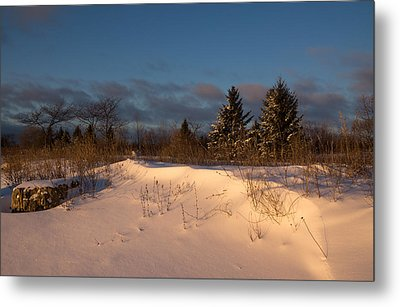 The Morning After The Snowstorm Metal Print by Georgia Mizuleva