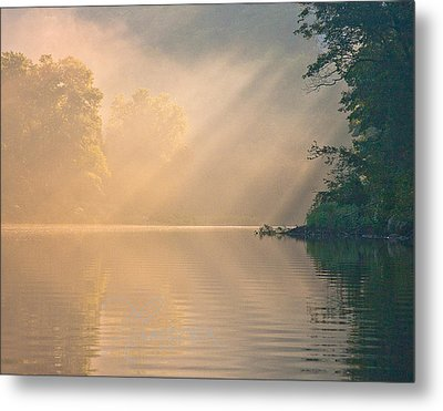 The Morning After Metal Print
