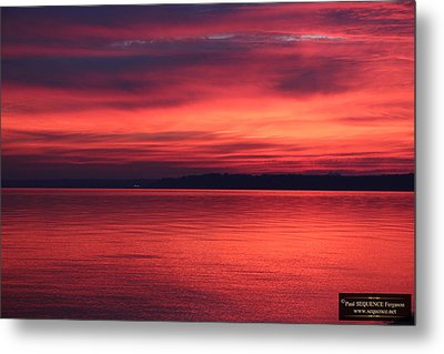 The Morning View 2 Metal Print by Paul SEQUENCE Ferguson             sequence dot net
