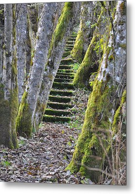 The Moss Stairs Metal Print