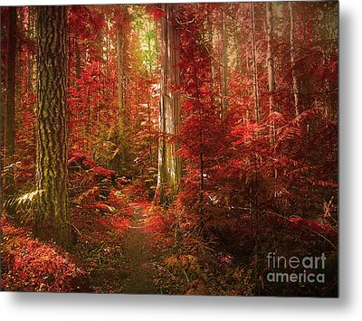 The Mystic Forest Metal Print