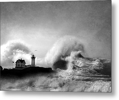 The Nubble In Trouble Metal Print by Lori Deiter