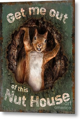 The Nut House Metal Print by JQ Licensing Jeff wack