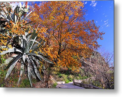 The Old Bridge In Automn Metal Print by Guido Montanes Castillo