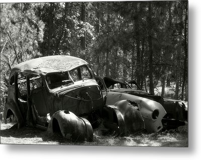 The Old Guys Metal Print by Michele Richter