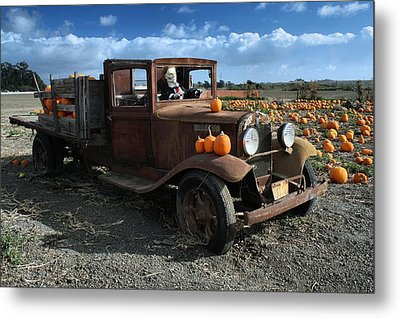 Metal Print featuring the photograph The Old Pumpkin Patch by Michael Gordon