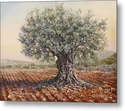 The Olive Tree In The Valley Metal Print