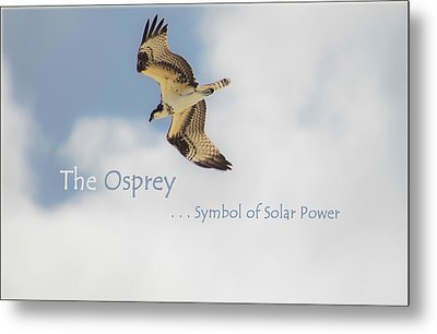 Metal Print featuring the photograph The Osprey by DigiArt Diaries by Vicky B Fuller