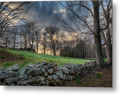 The Other Side Metal Print by Bill Wakeley