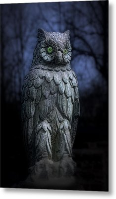 The Owl Metal Print by Tom Mc Nemar