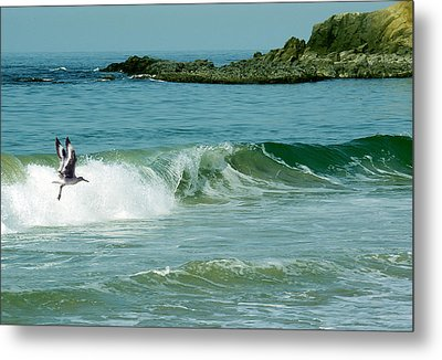 The Pacific Flyer Metal Print