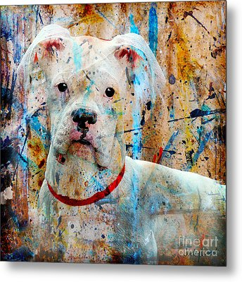 The Painter's Dog Metal Print