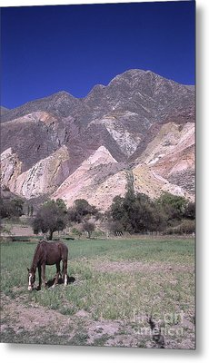The Painters Palette Jujuy Argentina Metal Print by James Brunker