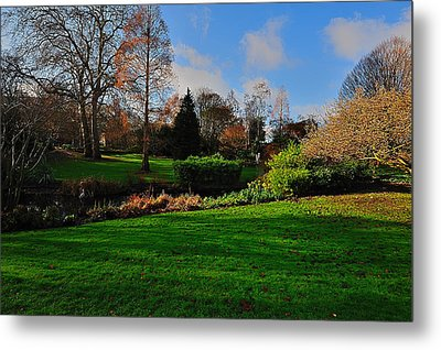 The Park And The Autumn Sun Metal Print by Marwan Khoury