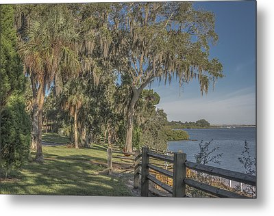 Metal Print featuring the photograph The Park by Jane Luxton