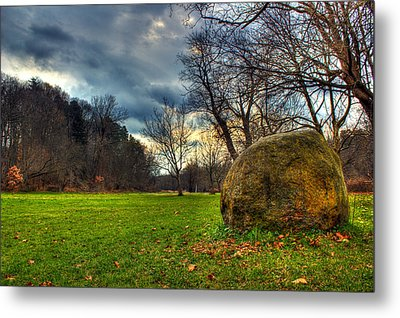 The Park Metal Print by Tim Buisman