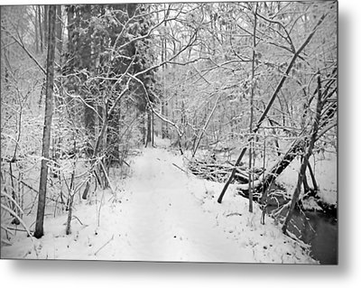 The Path Not Taken Metal Print by Betsy Knapp