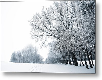 The Path Of A Wandering Soul Metal Print