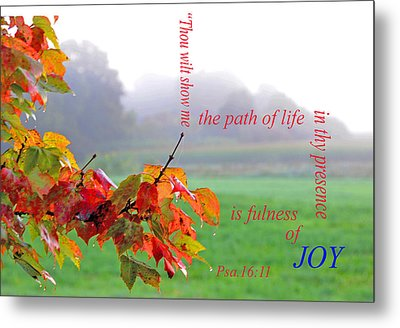 Metal Print featuring the photograph The Path Of Life by Paul Miller