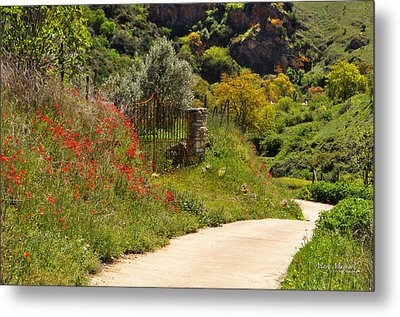 The Path Through The Valley Metal Print