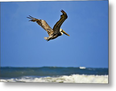 Metal Print featuring the photograph The Pelican And The Sea by DigiArt Diaries by Vicky B Fuller