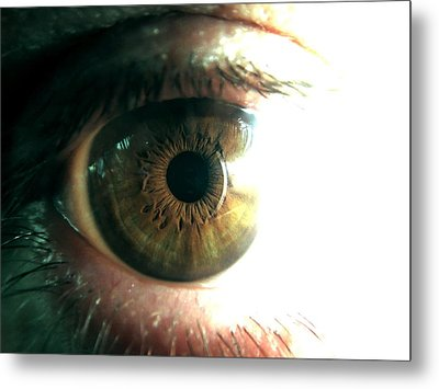 The Physicists Eye Metal Print