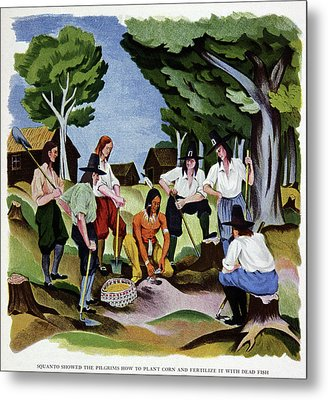 The Pilgrims Learning To Farm Metal Print by Cci Archives