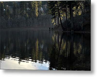 The Point Metal Print by Randal Bruck