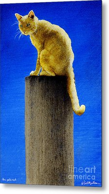 The Pole Cat... Metal Print by Will Bullas