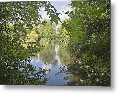 The Pond -- Ireland Metal Print