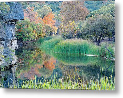 The Pond At Lost Maples State Natural Area - Texas Hill Country Metal Print by Silvio Ligutti