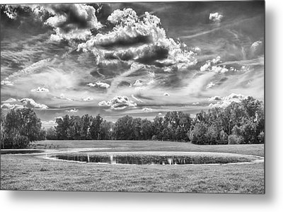 Metal Print featuring the photograph The Pond by Howard Salmon