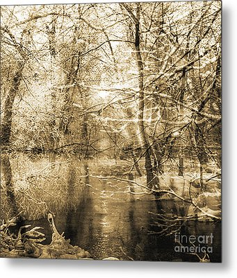The Pond Metal Print by Yanni Theodorou