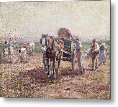 The Potato Pickers Metal Print by Harry Fidler