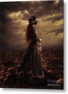 The Pumpkin Patch Metal Print by Shanina Conway