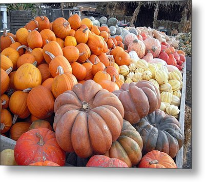The Pumpkin Stand Metal Print by Richard Reeve