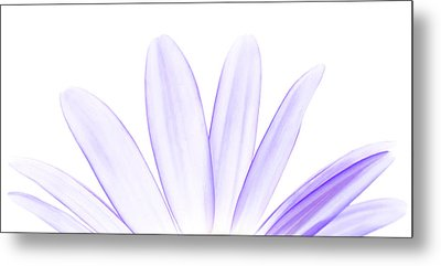 The Purple In Your Soul Metal Print