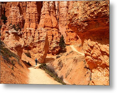 The Queens Garden Trail Bryce Canyon Metal Print by Butch Lombardi