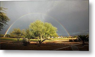 The Rain And The Rainbow Metal Print