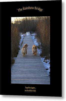 The Rainbow Bridge Metal Print by Rhonda McDougall