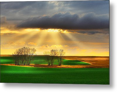 The Ray Of Light Metal Print by Kadek Susanto