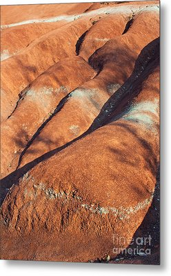 The Red Planet Metal Print by Barbara McMahon