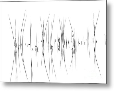 The Reeds Metal Print by Andrea Kollo