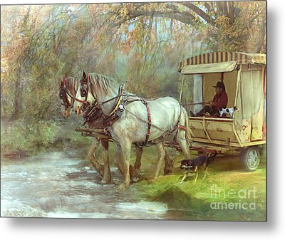The River Crossing Metal Print by Trudi Simmonds