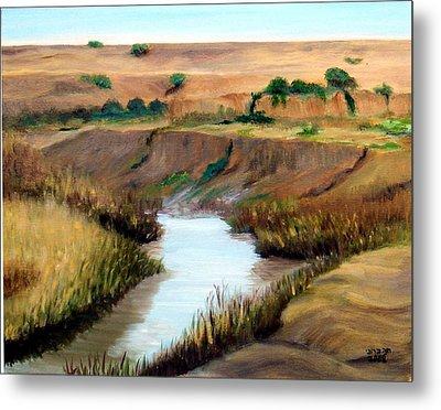 the river Jordan Metal Print by Hannah Baruchi