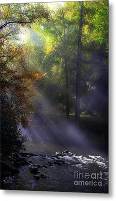 The River's Embrace Metal Print by Michael Eingle