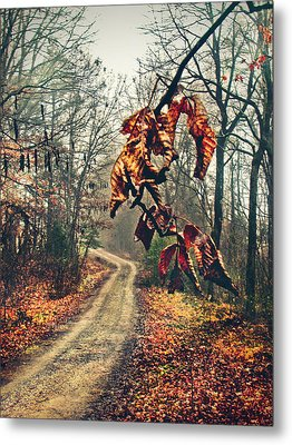 The Road Home Metal Print by Jessica Brawley