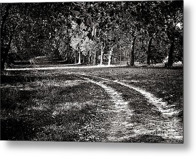 The Road Less Than Way Much Less Traveled  Metal Print by Olivier Le Queinec
