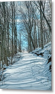 The Road Less Traveled Metal Print by Lara Ellis