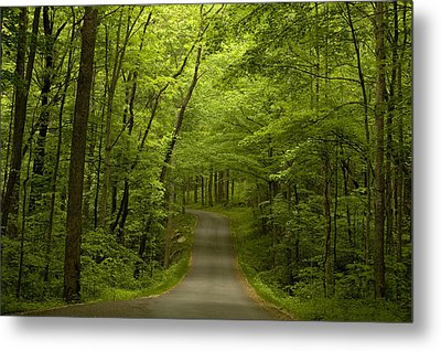 The Road Less Travelled Metal Print by Andrew Soundarajan